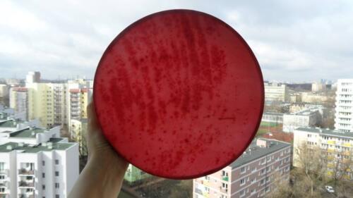 Bębny obręczowe fot. z archiwum Anny Szyszki