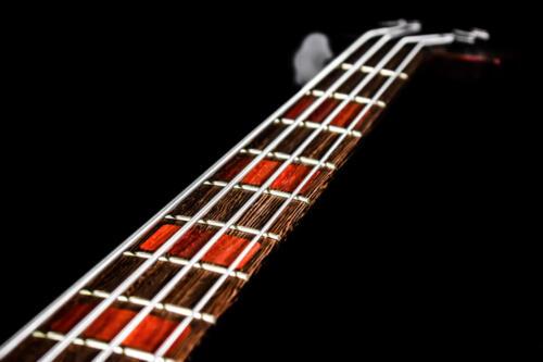 Bass (10)