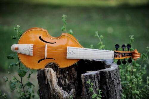 Lucjan Kościółek viola da gamba fot Bartosz Frydrych