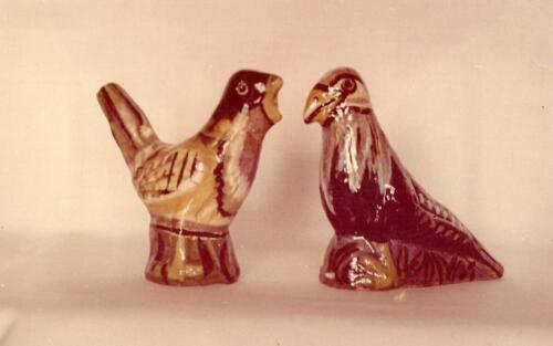 ptaki-mariana-romanczyka